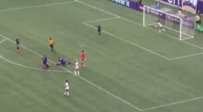 WATCH: Icelandic commentator 'calls' Edmonds' goal
