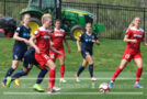 Monday Roundup: Lohman out with confirmed ACL tear