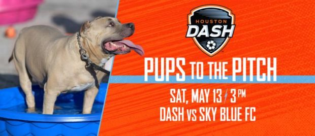 (image courtesy Houston Dash)